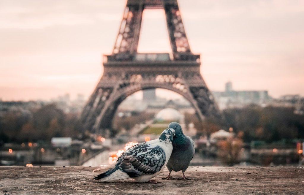 planes para disfrutar de París